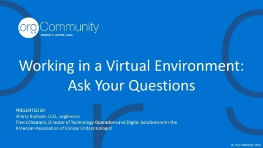 Working in a Virtual Environment - Ask Your Questions